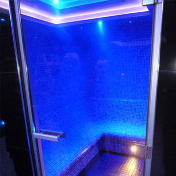 bleisure.com steam room door 1